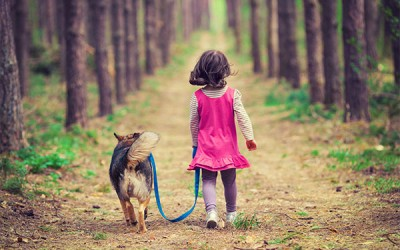 Caring for a pet: happiness, psychological and social well-being
