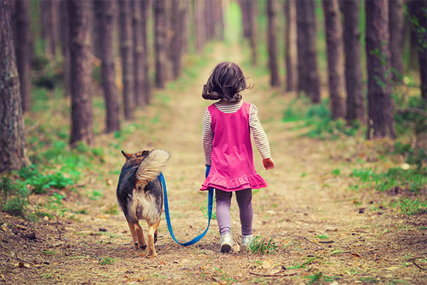 psychology and pets Comparative psychology refers to the scientific study of the behavior and mental processes of non-human animals, especially as these relate to the phylogenetic history, adaptive significance ivan pavlov's early work used dogs.