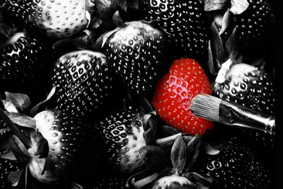Seph Fontane Pennock Red strawberry sticking out from the crowd
