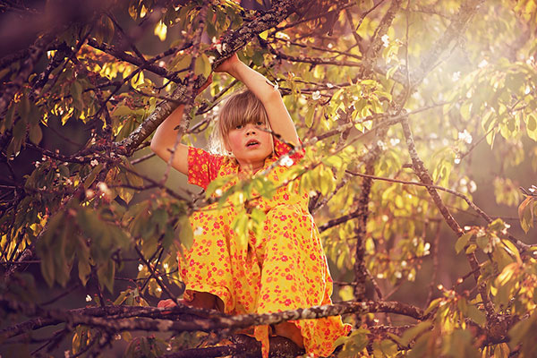 young girl in yellow dress in a tree